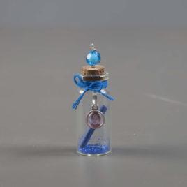 Foto wensflesje blauw